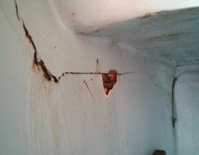 Rotted bulkhead in Tartan 37