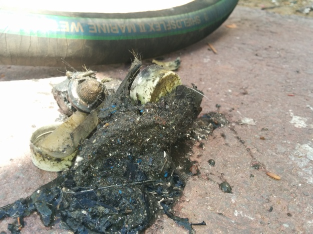 Yeah, this is why the scupper hoses needed replacing - a whole bunch of junk had clogged them up!