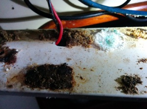 corrosion2